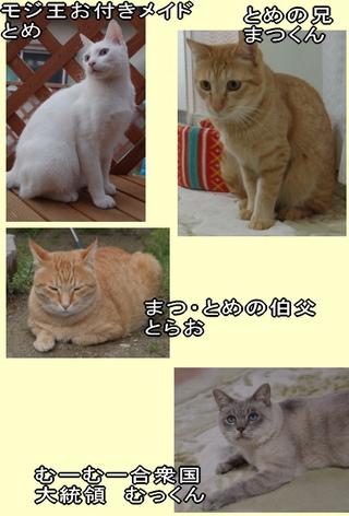 Com_3